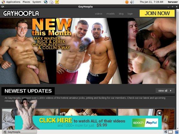 Discounted Gayhoopla.com Membership